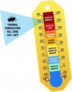 tr-thermometer_high-res-235x300