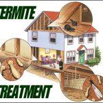 termite-treatment002
