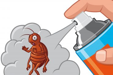 Vector illustration Spraying  insecticide on cockroach